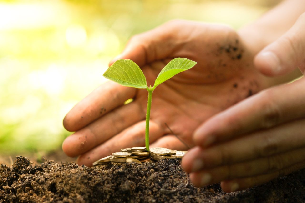 farm land investments